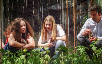 Leac bun pentru trup, minte și suflet: Grădina LTN